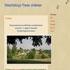 Vakantiehuisje Franse Ardennen (vanaf 260E)